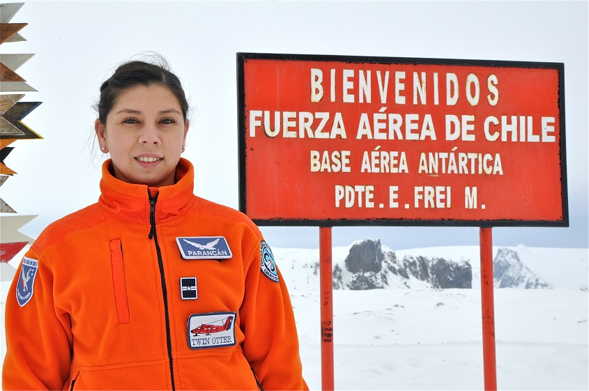 Piloto fach antártica