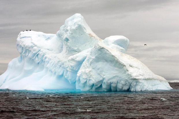 View of Collins Glacier in Antarctica