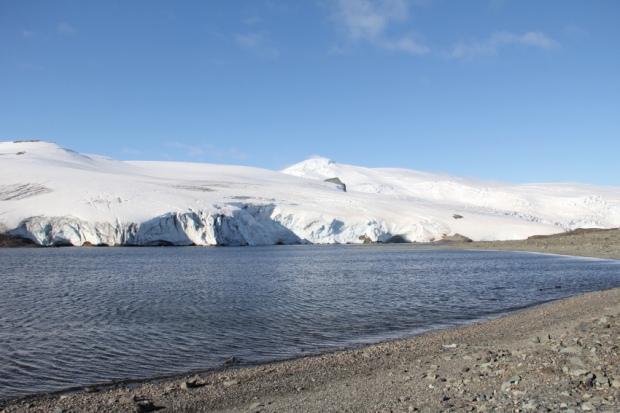 Antártica Chilena. Ministerio de Medio Ambiente. Gobierno de Chile