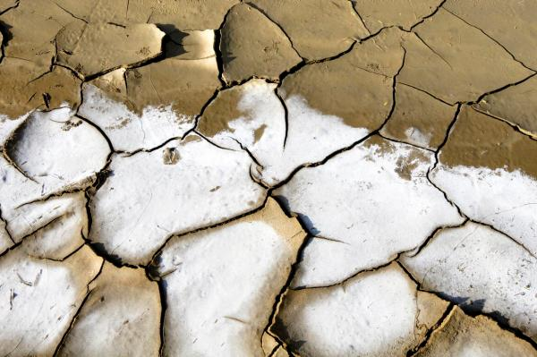 2009 World Water Day: Effects of Water Scarcity
