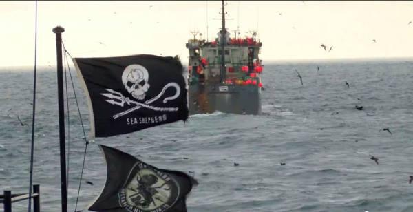Sea Shepherd en la Antártica