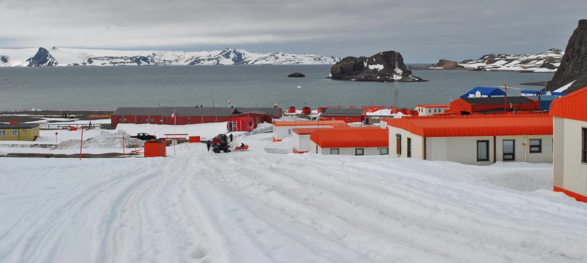 El llamado del internacionalismo científico a renegociar el Tratado Antártico