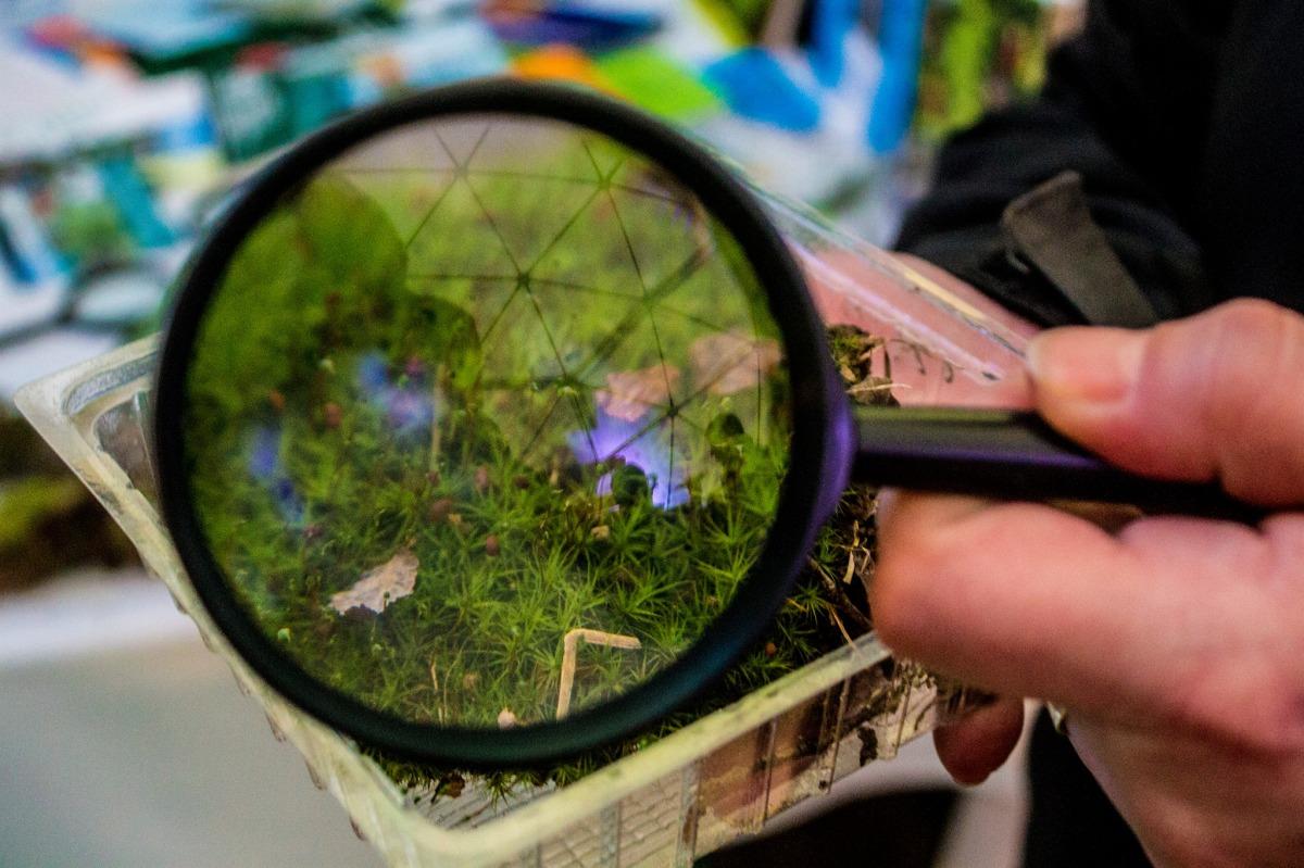 Columna de opinión: Conservación de especies y del patrimonio genético