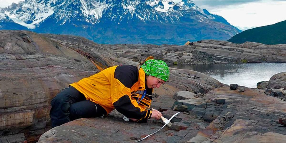 Científica magallánica realiza hallazgo paleontológico mundial del período Cretácico en la Patagonia