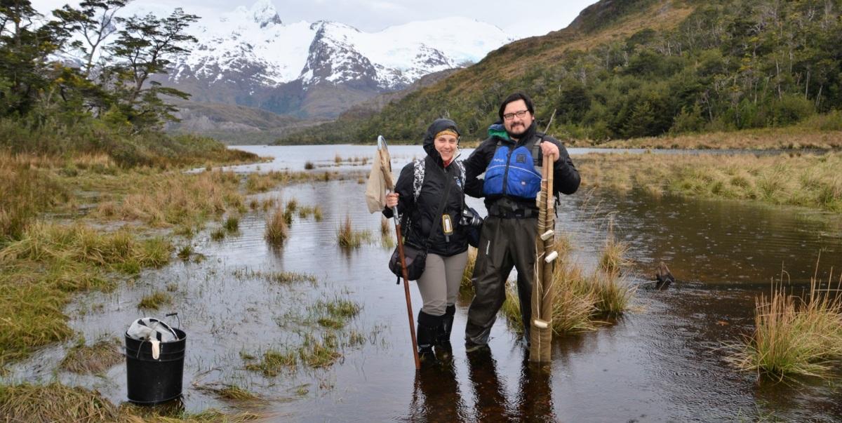 Parque Nacional Alacalufes o Kawésqar: una esperanza para los fiordos y canales magallánicos